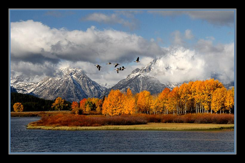 Oxbow Bend - Grand Teton N.P.