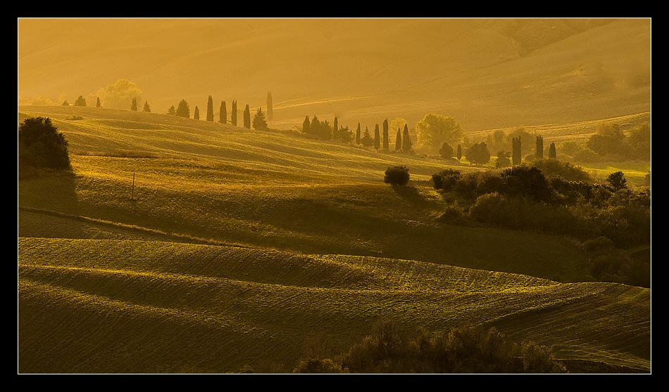 "The rich, golden ""sfumato"" light rakes across the gentle fields of Tuscany at Sunset.<br />October 2013"