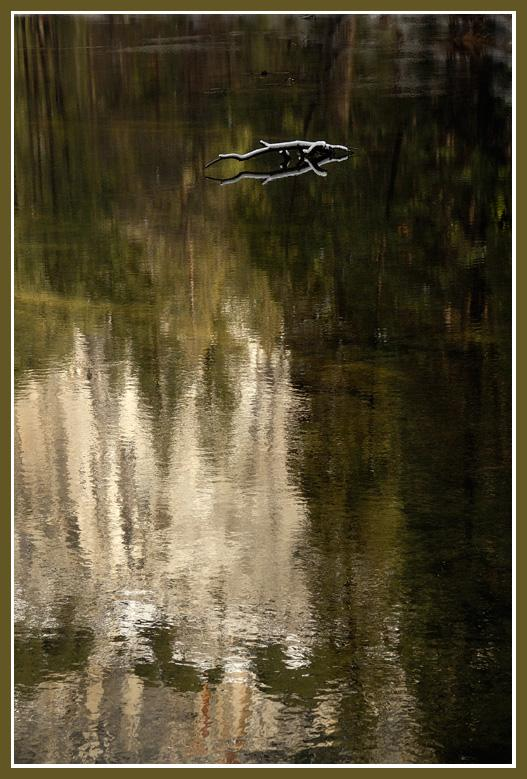 El Capitan Reflection Abstract<br />On the Merced River