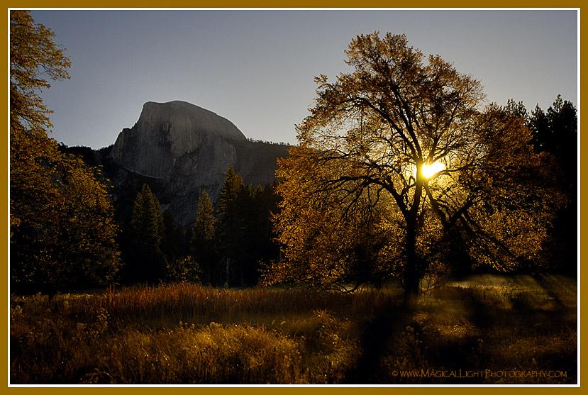 Cook's Meadow<br />Crisp morning air and golden harvest hues fill our senses in a favorite place.